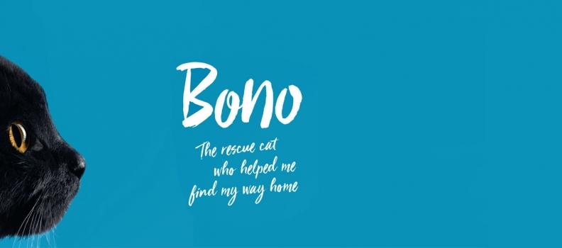Bono previews